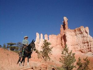 Bryce by Horseback